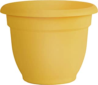 "product image for Bloem AP1623 Ariana Self Watering Planter 16"" Earthy Yellow"