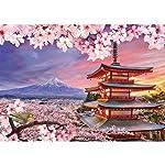Quebra-cabeca Cartonado Monte Fuji 5000 Pcs. Grow Multicor
