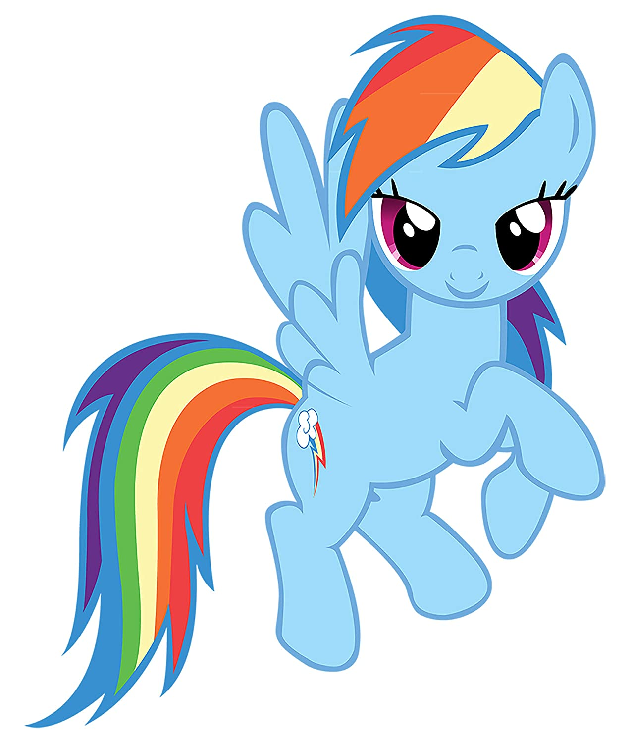 My Little Pony Rainbow Dash Iron On Transfer for T-Shirts & Other Light Color Fabrics #2