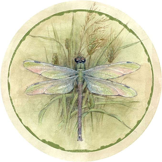 Dragonfly and Iris I TSGG8 Thirstystone Drink Coaster Set