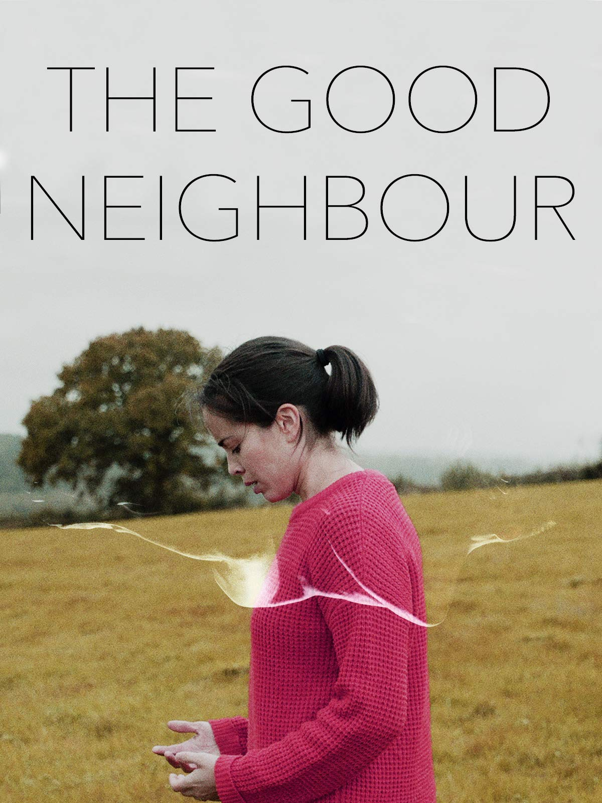 Neighbour neighbour