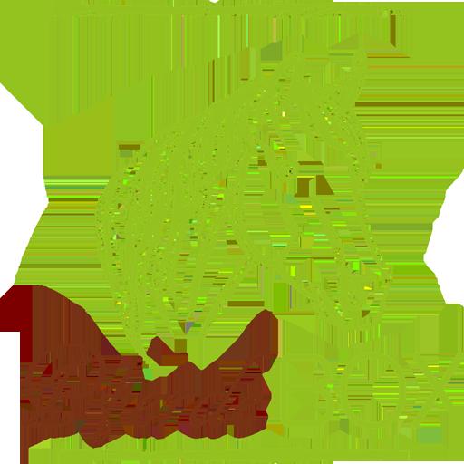 pferde-box
