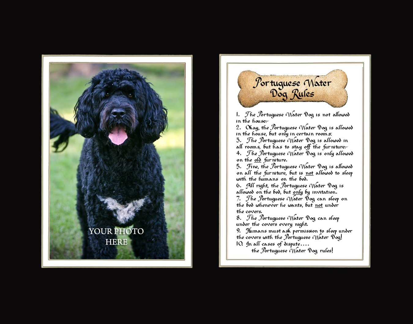 Dog Rules Portuguese Water Dog Wall Decor Pet Dog Saying Gift 1
