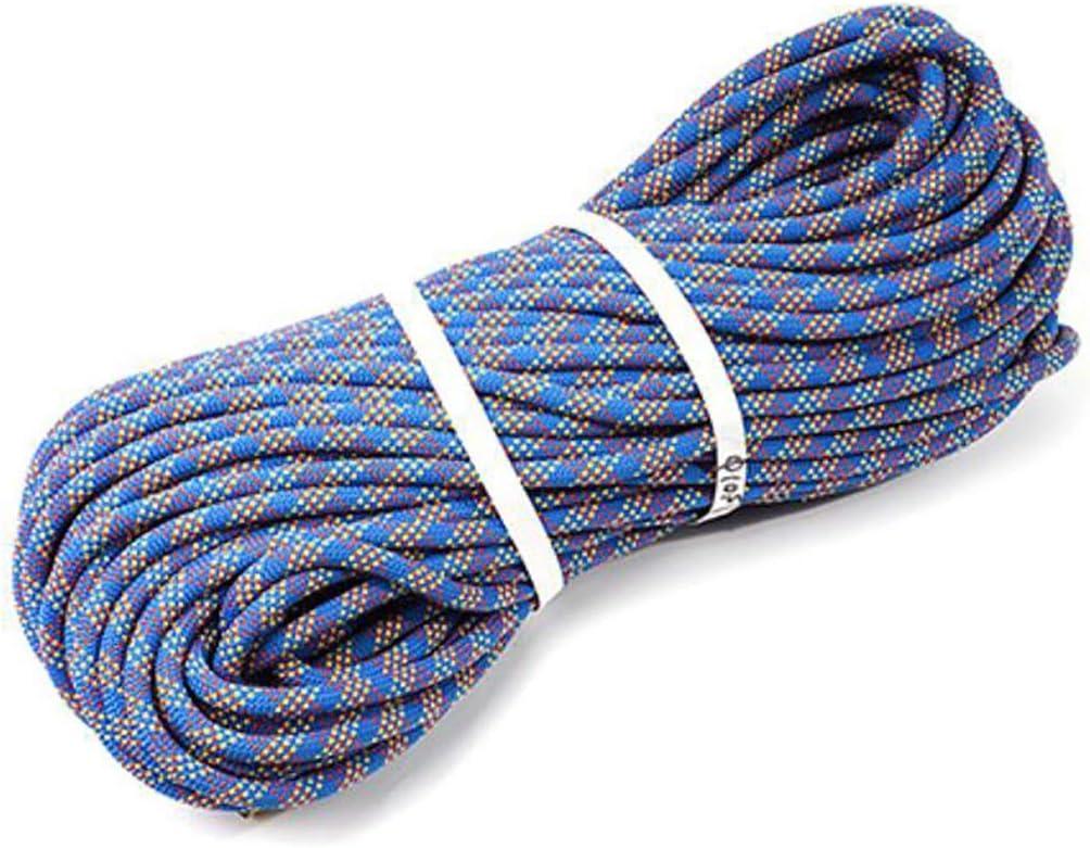 LIZIPYS Cuerdas específicas Cuerda estática para Escalar ...