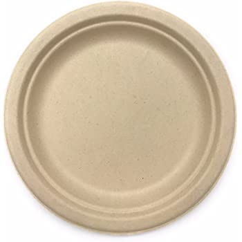 amazon com 500 count 9 in round disposable plates natural