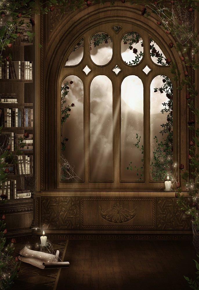 leyiyi 8 x 10ft写真背景Fairy Tale Castleグランジグラフィティビンテージヨーロッパアーキテクチャローズ本棚Flora Moonlight Candle子供誕生日フォトPortraitビニールStudioビデオProp   B07FD7LGKJ