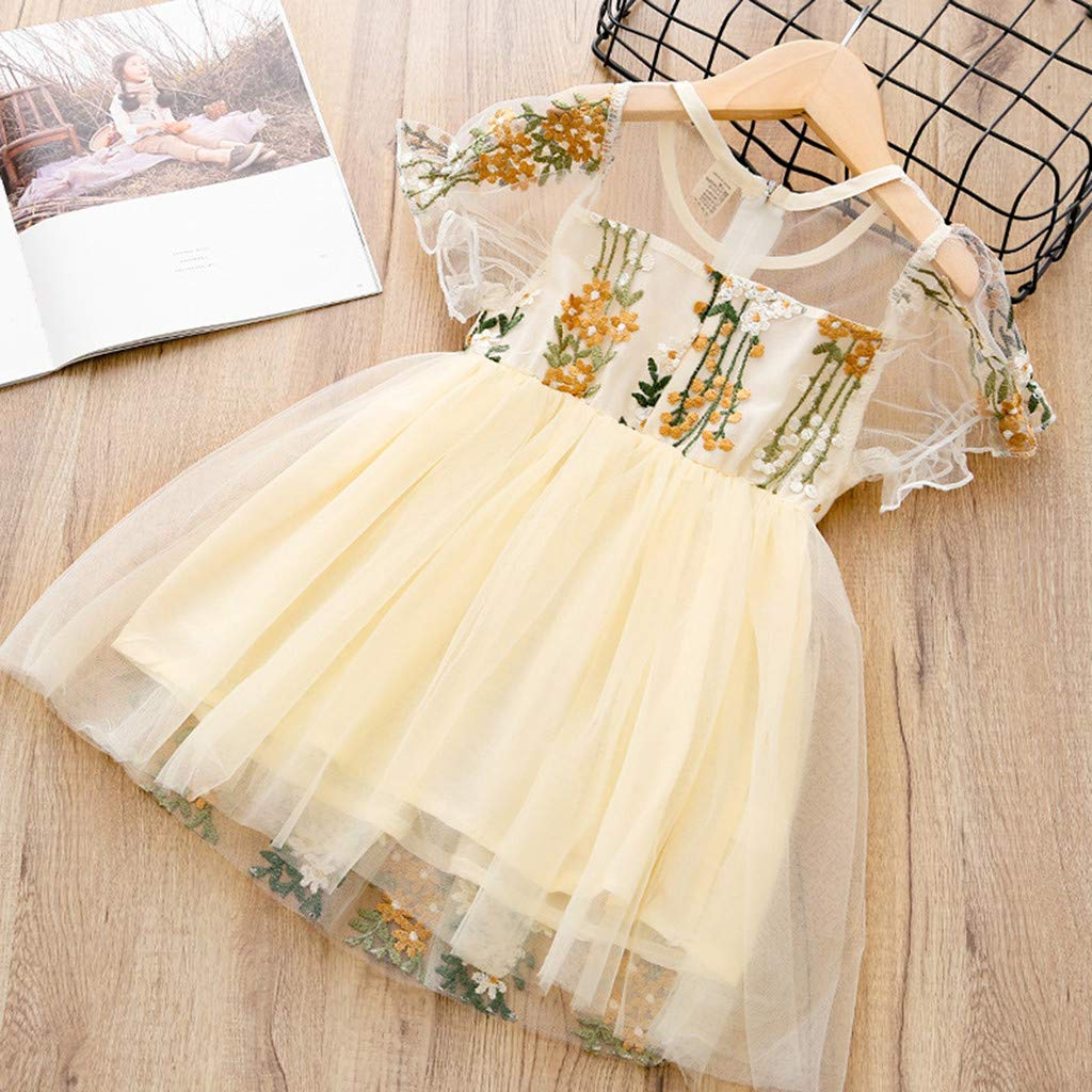 Summer Short Sleeve Flower Embroidery Party Pageant Birthday Dress Toddler Baby Girls Princess Tulle Tutu Dress