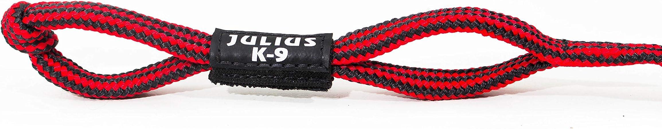 Julius-K9 IDC de Pelota con Ass: Amazon.es: Productos para mascotas