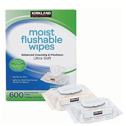 Kirkland Signature - Pack de 600 toallitas hipoalergénicas, sin alcohol, ultra suaves, húmedas
