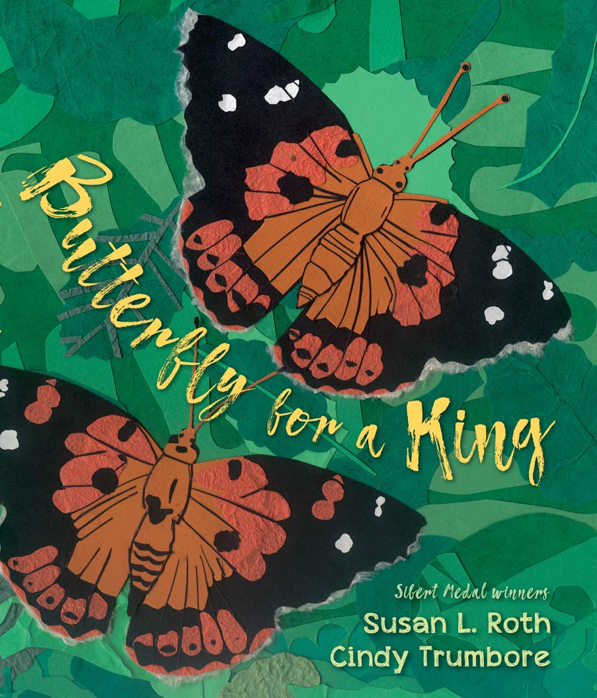 Image result for butterfly for a king amazon
