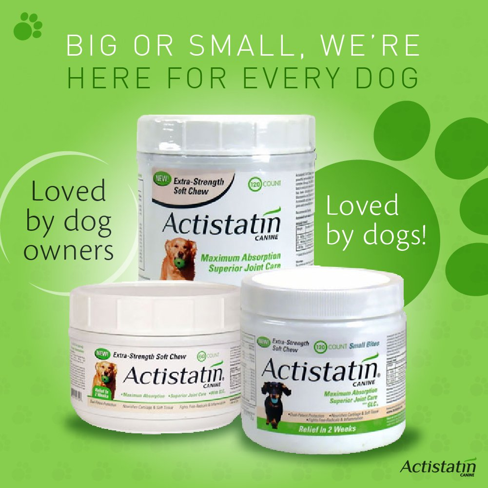 Actistatin Canine Small Dog Soft Chews, 120ct – Patented Extra-Strength Joint, Cartilage, Soft Tissue Supplement: Glucosamine, Chondroitin, Manganese, MSM, L-Carnitine – High Absorption, Fast Results by Actistatin (Image #6)