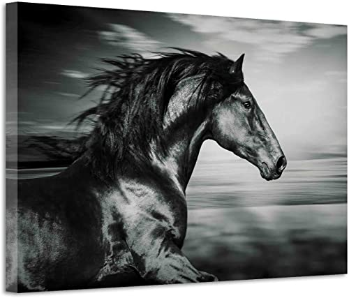 Black Horse Canvas Wall Art: Wild Animal Painting Picture Artwork