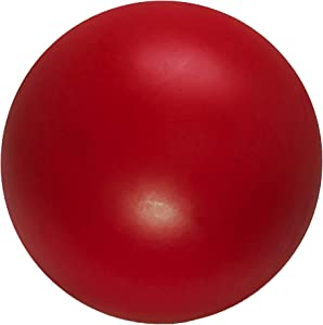 Virtually Indestructible Best Ball for Dogs (colors vary)
