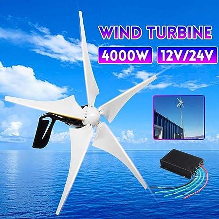 SISHUINIANHUA La energía eólica Electricidad Generador 4000W 5 ...