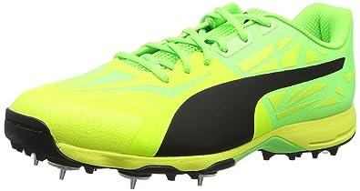 2670272dec Puma Men's Evospeed 1.5 Cricket Spike Shoes
