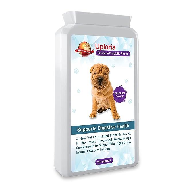 Uploria Pet World Suplemento Probiótico para Estómagos Sensibles De Perros | 120 Comprimidos con Sabor A Pollo | Es También Un Suplemento para El ...
