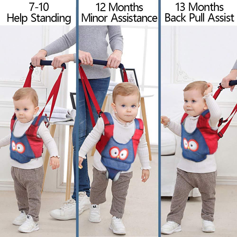 Lauflernhilfe Gehhilfe f/ür Baby MLM Gehhilfe Baby Lauflernhilfen Einstellbare mit Sicherheitsverschluss und Magischen Aufklebern Stehen Gehen Lernen Helfer Walker f/ür Baby 7-24 Monate