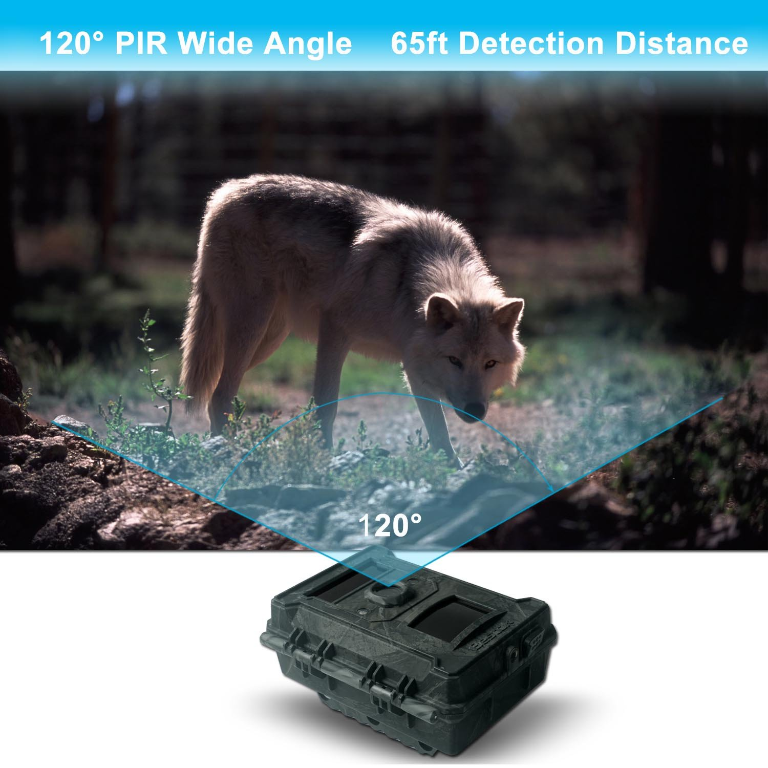 Bestok Trial Camera 12MP 120° HD Wildlife Hunting Cam with Infrared LEDs Night Vision 65 ft/20m 2.4'' LCD Waterproof IP65 Game Camera for Wildlife & Home Security by Bestok (Image #3)