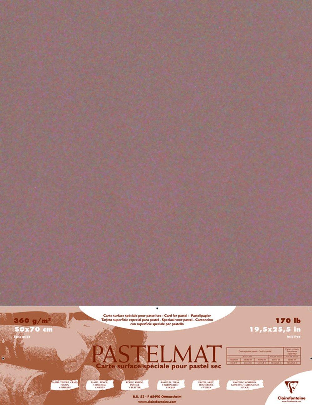 Amazon.com : Pastelmat Card for Pastel - 19.5 x 27.5 Inch ...
