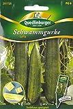 Schwammgurke, Luffa cylindrica, ca. 5 Samen