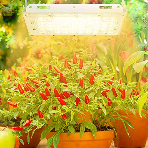 LED Grow Lights, Full Spectrum Panel Grow Lamp with LM301H 3500K Red LED Plant Lights for Indoor Plants,Micro Greens,Clones,Succulents,Seedlings