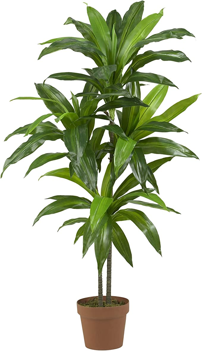 Amazon Com Nearly Natural 43in Dracaena Silk Real Touch Artificial Plant Green Home Kitchen