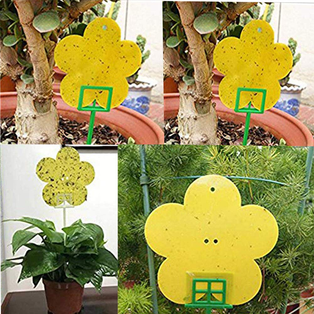 Double-Sided Sticky Insect Board Whiteflies for Fungus Gnats Fly Insect Pest Control for Plant 12-Pack High Effect Yellow Sticky Traps Aphids Sprie/ßen Plant Fly Catchers