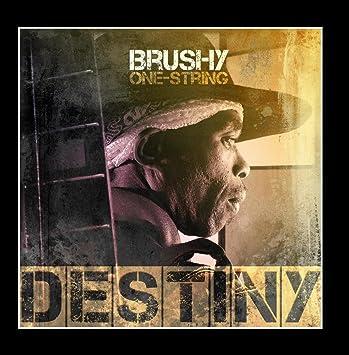 brushy one string destiny