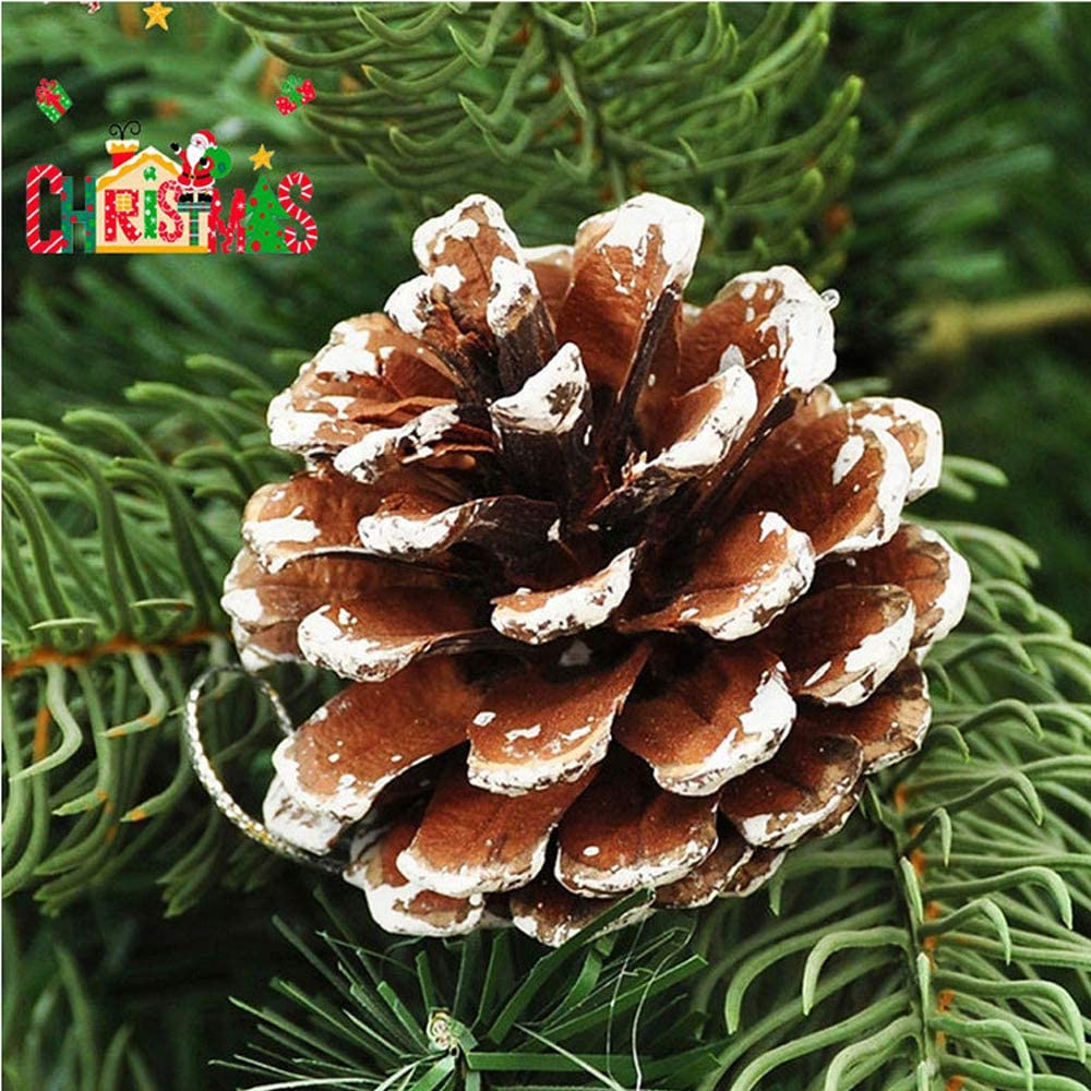Zuou Christmas Pine Cone Ornaments,24 pcs Natural Pine Cone,Christmas Tree Snowflake Pine Cones Party Hanging Decoration