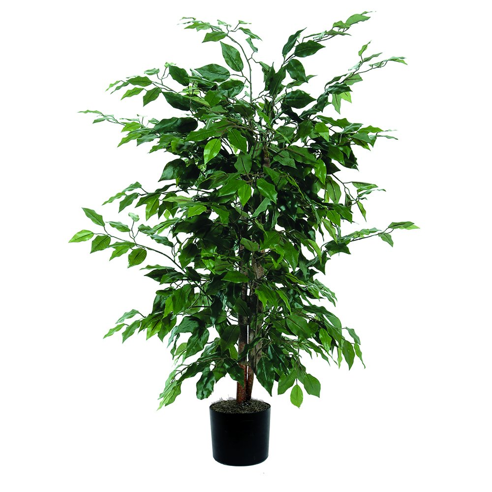 Vickerman 4' Artificial Ficus Bush set in Black Pot TBU0140-06