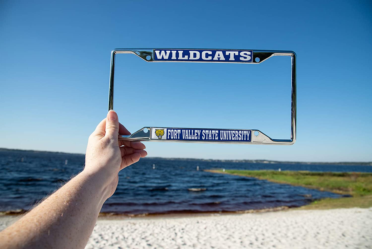 Desert Cactus Fort Valley State University NCAA Metal License Plate Frame for Front or Back of Car Officially Licensed Mascot
