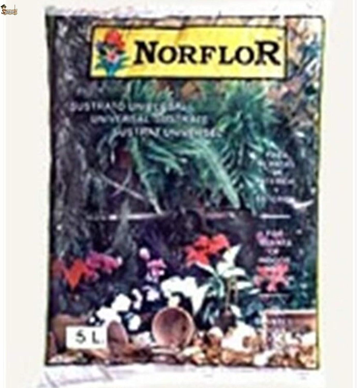 BricoLoco Sustrato Tierra Universal para Plantas, semilleros. Interior Exterior. con Corteza de Pino, turba y Materia orgánica compostada. Fertilizado NPK. Sacos de 5 LTS. (50 litros (10x5 LTS.))