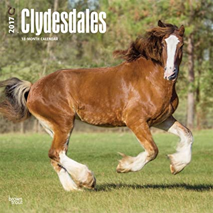 Clydesdales pared calendario caballos 2017 {JG} mejor ...