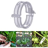 MIHEY 300 Pcs Tomato Trellis Clips, Tomato Vine Clips, Plant Support Garden Clips for Vine Vegetables to Grow Upright and Hea