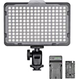 Neewer Dimmable 176 LED Video Light on Camera LED Panel with 2200mAh Li-ion Battery and Charger for Canon, Nikon…