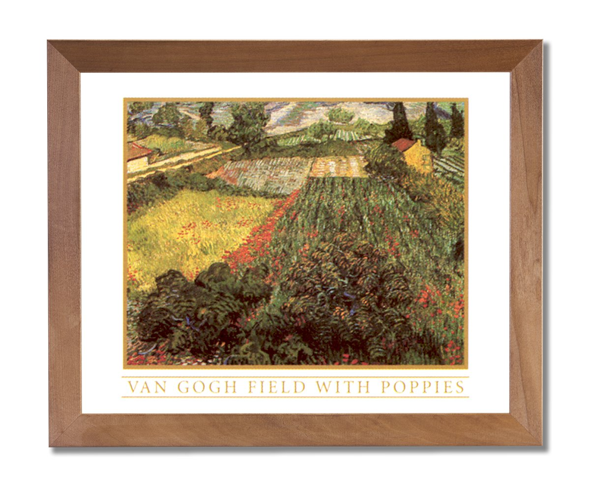 Amazon Vincent Van Gogh French Poppies Flower Wall Picture