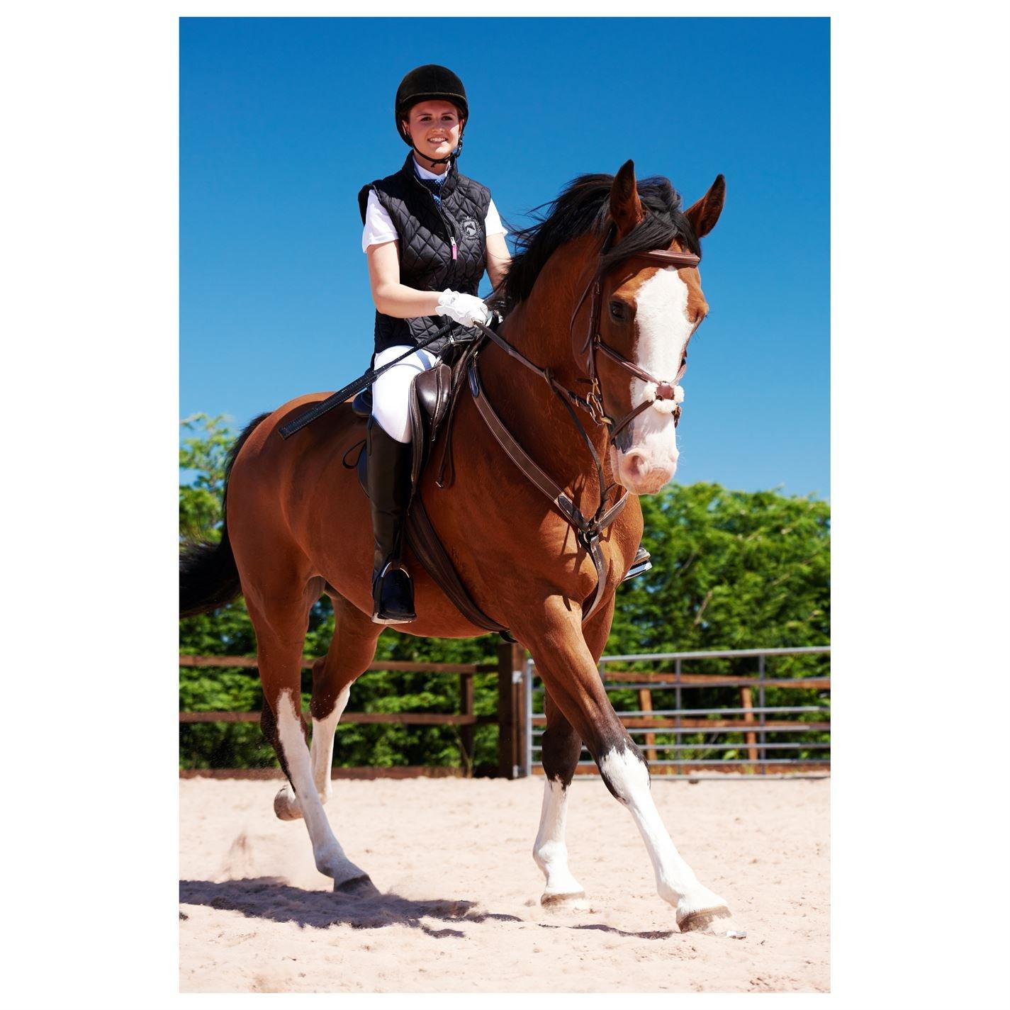 Requisite Quilted Jacket Ladies Equestrian Coat Top Lightweight Zip Warm Press