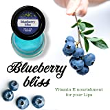 Healing Herbs Lip Balm