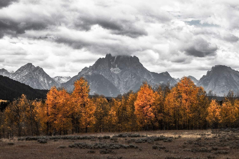Grand Teton Art Print - Modern Home Decor - Black and White Photograph Wyoming Nature Print Mt. Moran