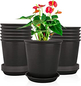 Ufrount Plastic Planter Pot with Drainage Holes, Succulent Planter Pots Planting Pot Flower Pots for Small Plant Perfect for Garden, Kitchen, Windowsill - Set of 12 (Gray)