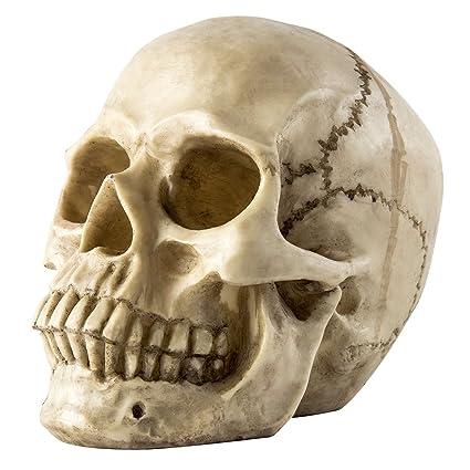 halloween props human skull head bone model life size replica realistic scary bedroom living room decor