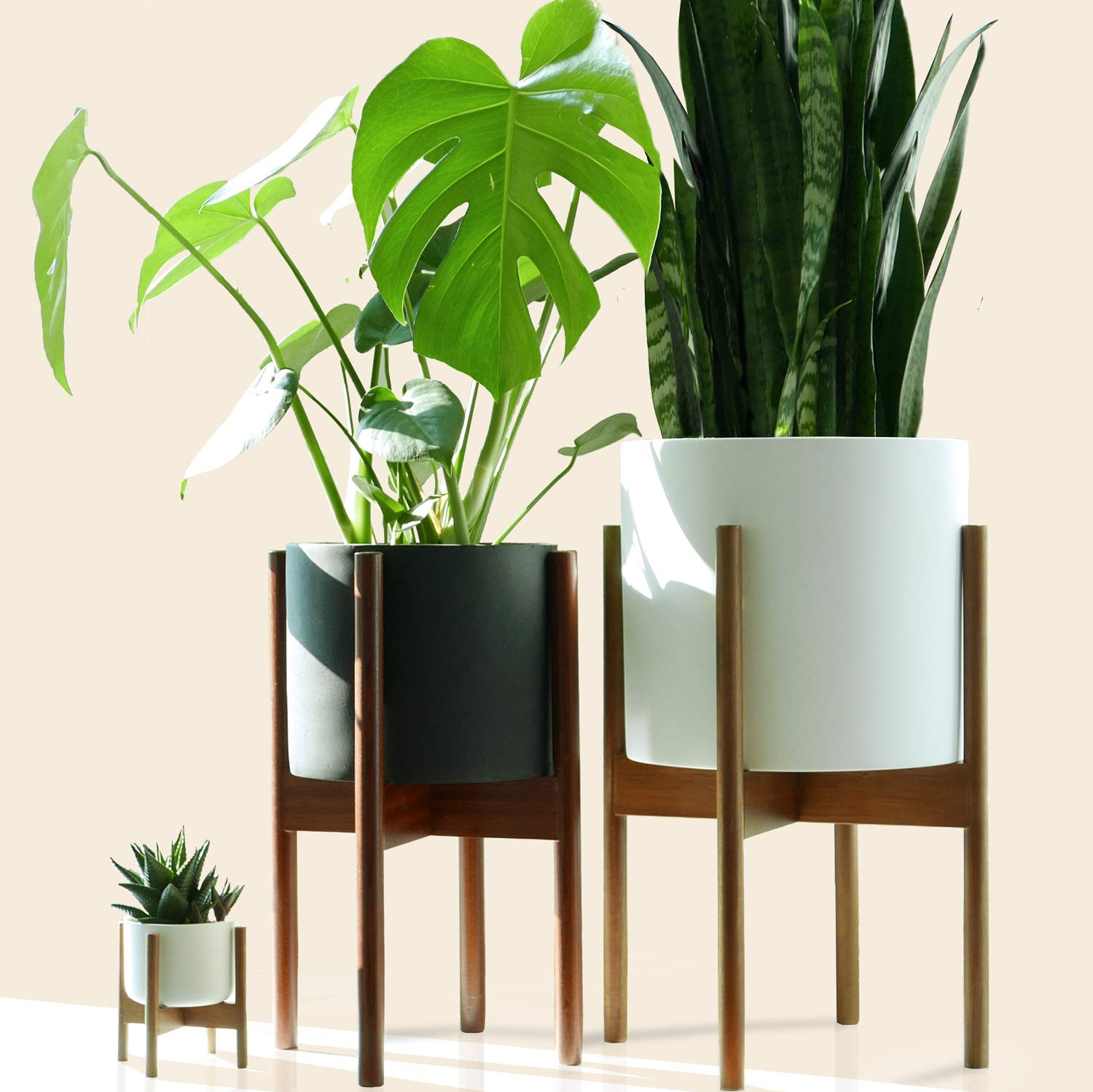 Fox & Fern Mid Century Plant Stand Indoor - Acacia - EXCLUDING 10'' Ceramic Pot - Fits Snake Plant by Fox & Fern