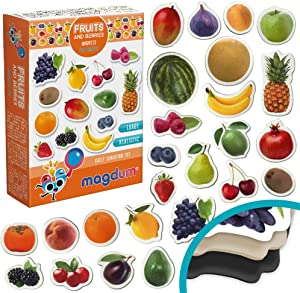 MAGDUM PHOTO FRUITs&Berries - magnets for kitchen -real LARGE fridge magnets for toddlers- Magnetic EDUcational toys baby 3 year old baby - LEARNing magnets for kids- Kid magnets - Development toys