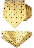 HISDERN Mens Fashion Classical Plaid Tie Handkerchief Wedding Party Necktie & Pocket Square Set