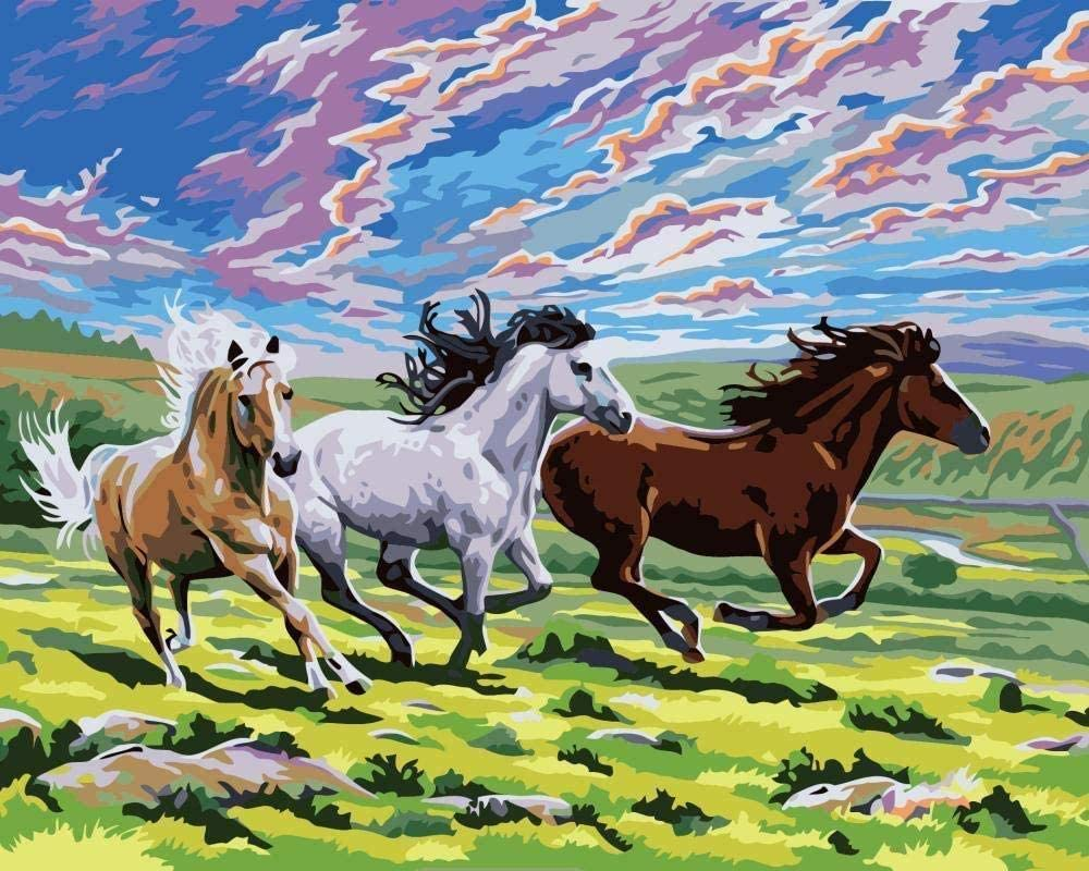 Pintura por números pintura al óleo digital caballo de la pradera dibujado para niños adultos estudiantes principiantes arte de la pared cuadros lienzo 40 x 50 cm
