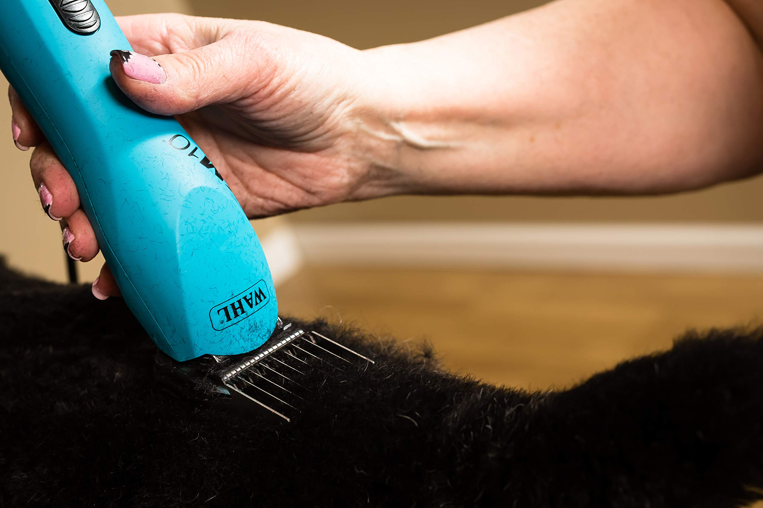 Wahl Professional Animal KM10 2-Speed Brushless Motor Pet Clipper Kit, Turquoise (#9791) by Wahl Professional Animal (Image #6)