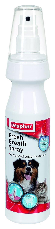 (4 Pack) Beaphar - Fresh Breath Spray