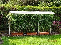 beckmann kg psn2 schutzdach f r pflanzen gr e 2 200 x 112 cm garten. Black Bedroom Furniture Sets. Home Design Ideas