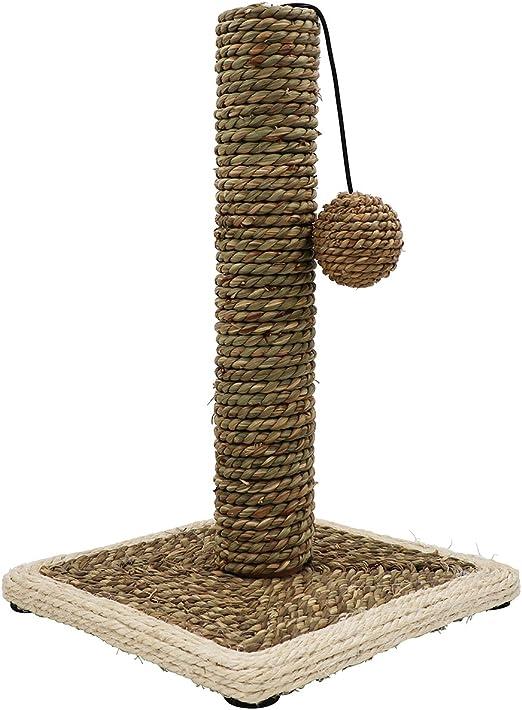 griffoir gato cilíndrico redondo gris par barato, árbol para gato natural simple (juegos y juguete): Amazon.es: Productos para mascotas