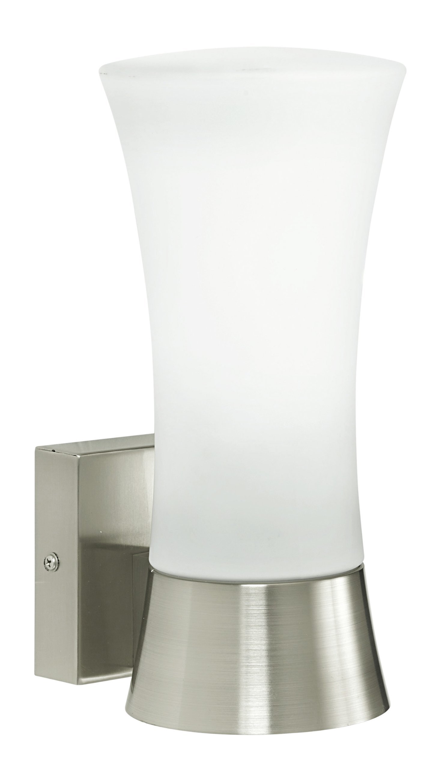 Eglo 88725A Outdoor Wall Light with Opal Frosted Glass, Stainless Steel Finish